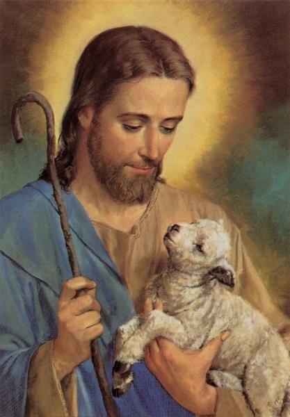 heiligenbild jesus der gute hirte postkartenformat